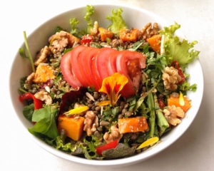 Butternut squash and walnut salad with tomato.